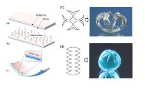 Schéma de fabrication de bicouches de PDMS avec une courbure spontanée (a ,b ,c),   et l'auto-façonnage de formes 3D à partir de modèles  bidimensionnels (d, e).  © V. Luchkinov