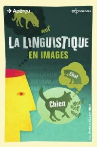 la-linguistique-en-images-hd